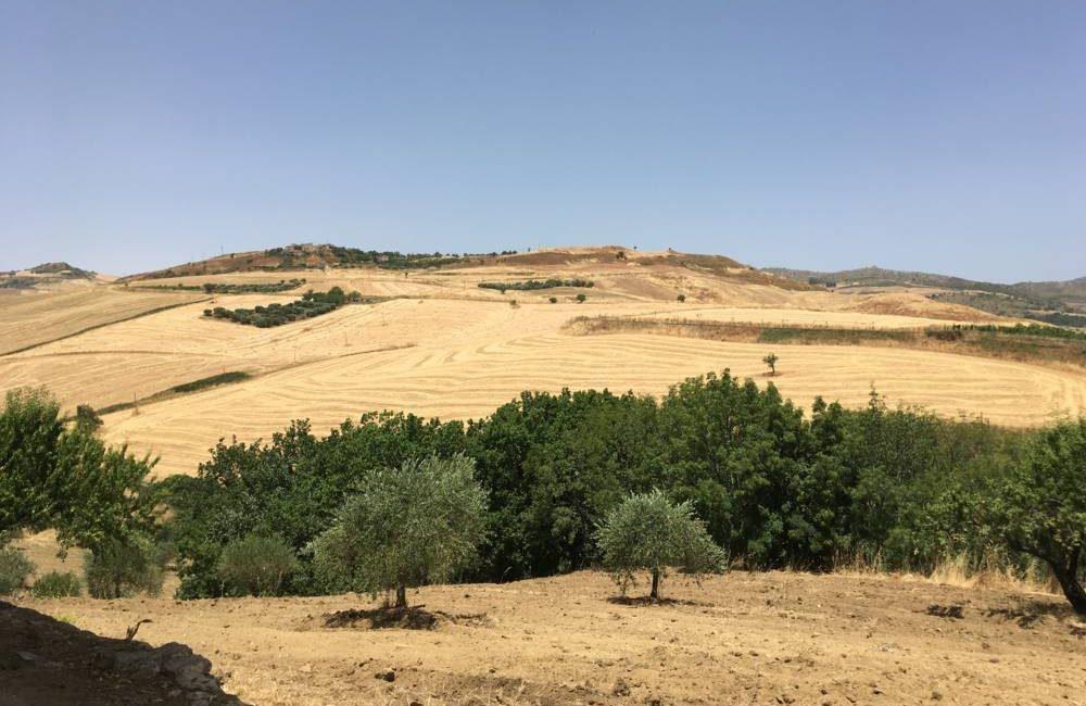 campagna madonie sicilia